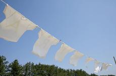 洗濯表示マークが変わったのを知っていますか?