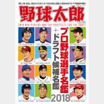 週刊野球太郎 人気記事ランキング#1 記事画像#6