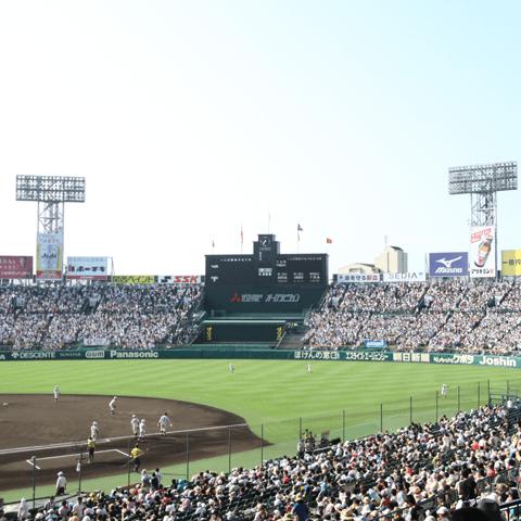【高校野球進学ガイド!】東京六大学リーグor東都大学リーグに進むならどの高校!?